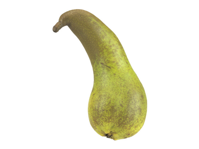 side view rendering of a unique pear 3d model