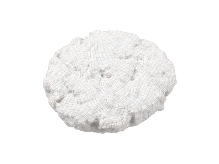 wireframe rendering of a beef burger patty 3d model
